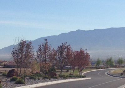 View of the Sandia Mountains along entry drive from Mirehaven